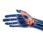 anatomisch-hand